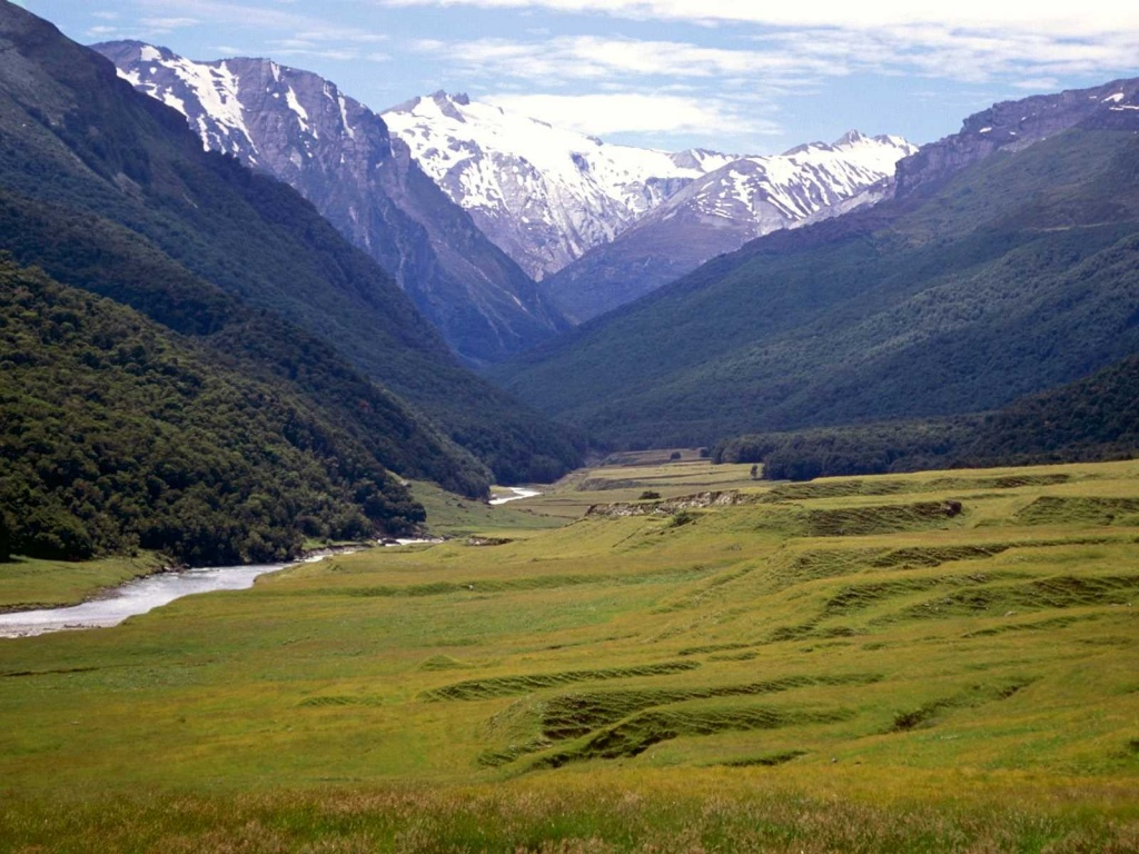 Cattle%20Flats,%20Dart%20River,%20New%20Zealand.jpg